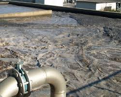 Mancato trattamento delle acque reflue, nuova infrazione dell'Europa per 175 agglomerati siciliani